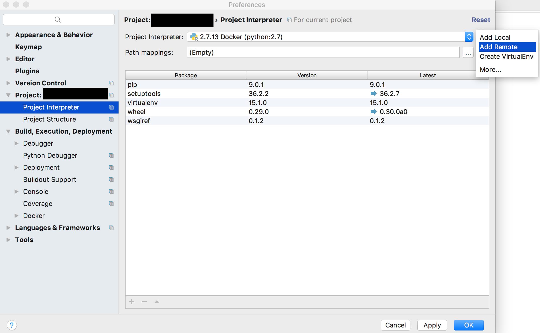 project_interpreter