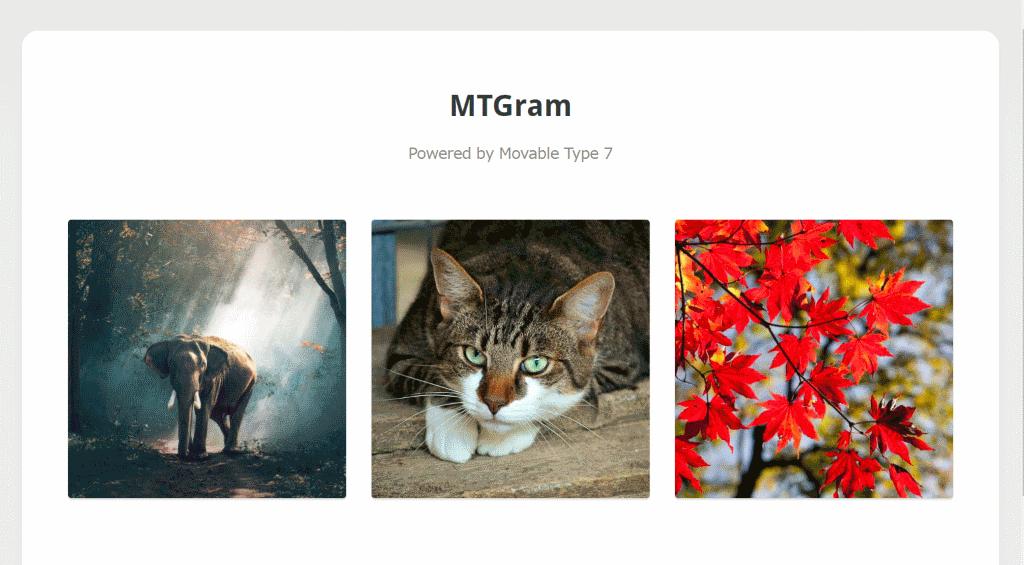 mtgram_06.png
