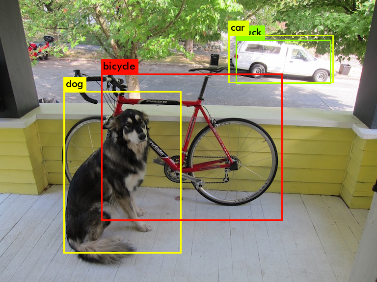 dog_tiny_predictions.png