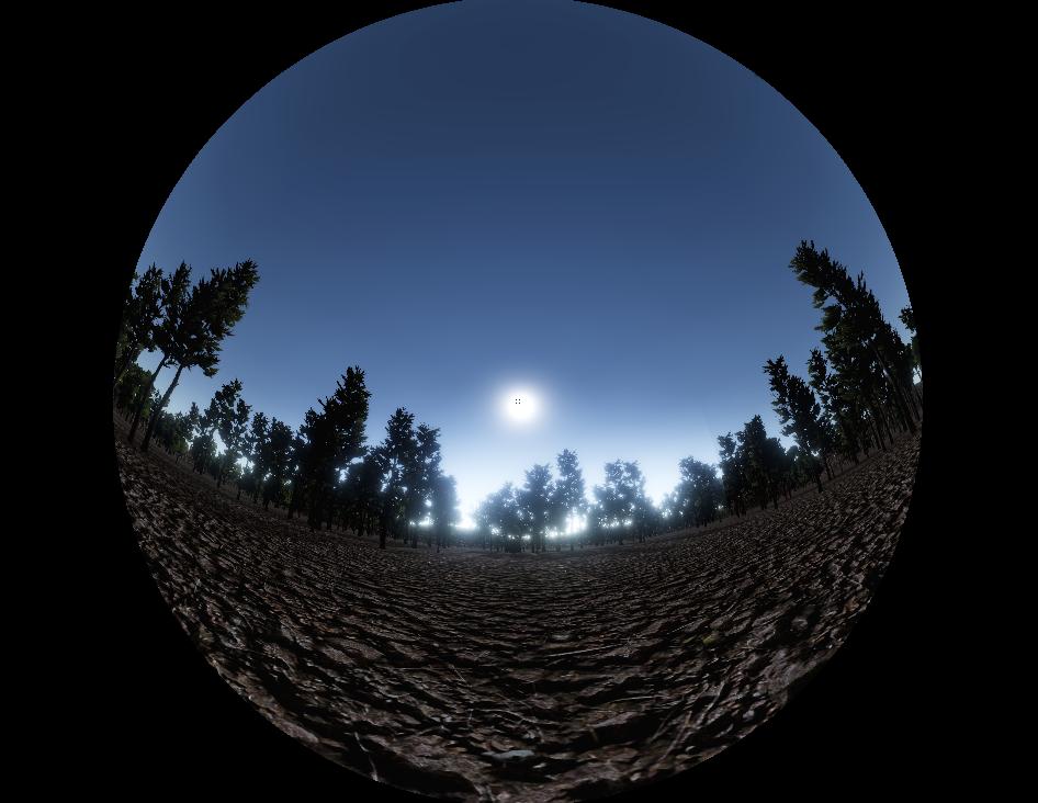 360画像(dome master)