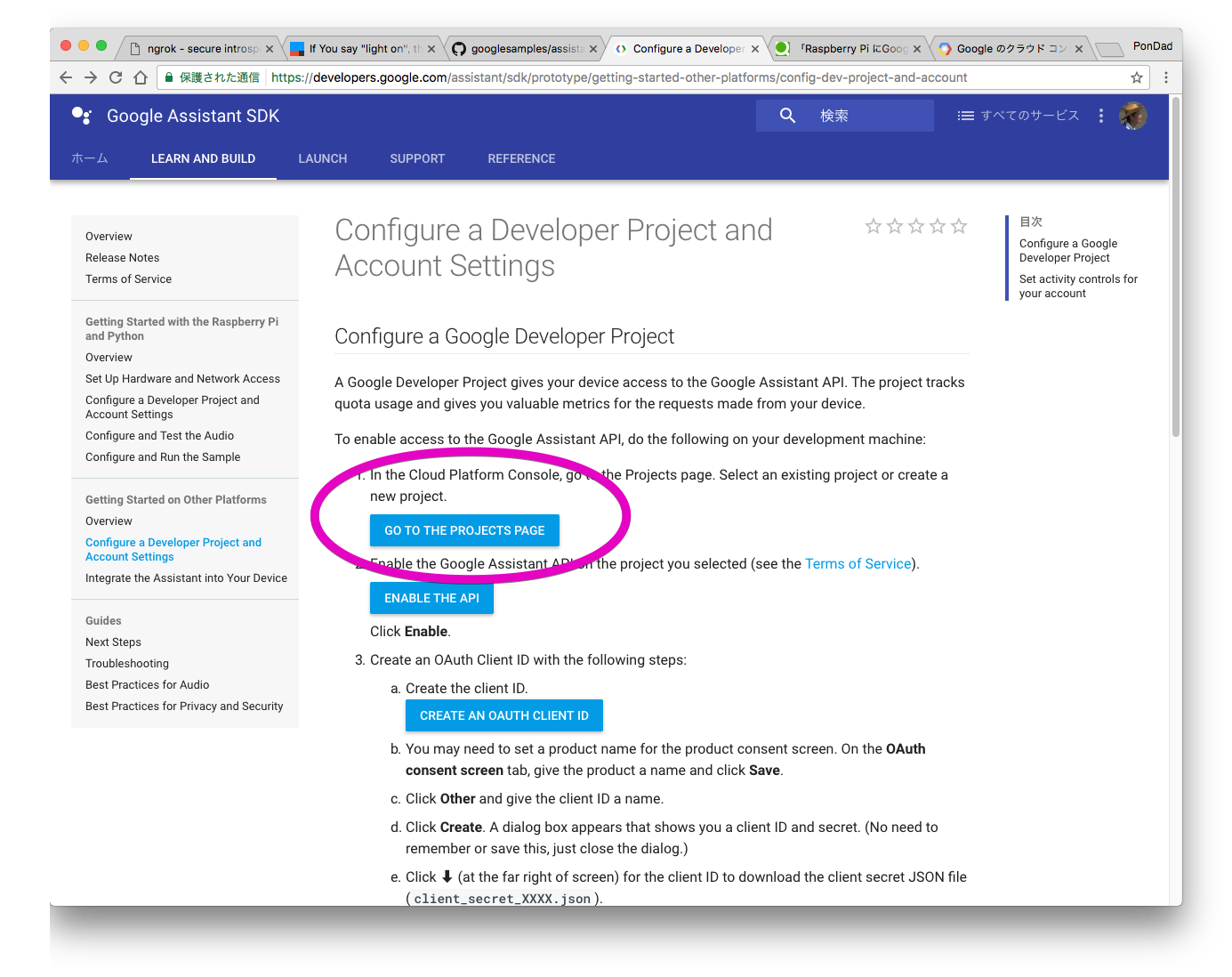 Configure a Developer Project and Account Settings  |  Google Assistant SDK  |  Google Developers 2017-04-29 23-07-20.png