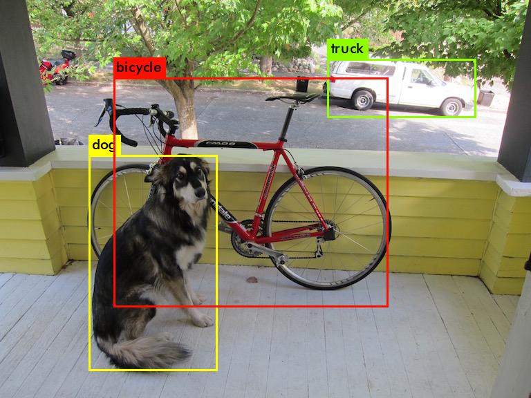 dog_predictions.png