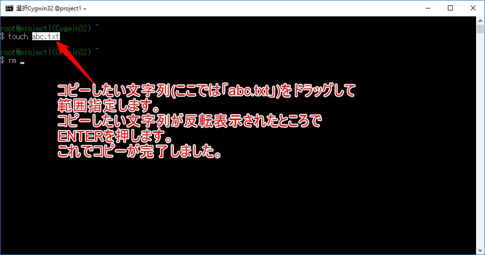 コンソール画面での文字列のコピーについて-b.png