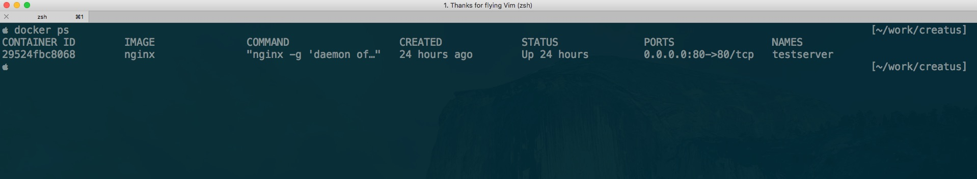 1__Thanks_for_flying_Vim__zsh_.jpg