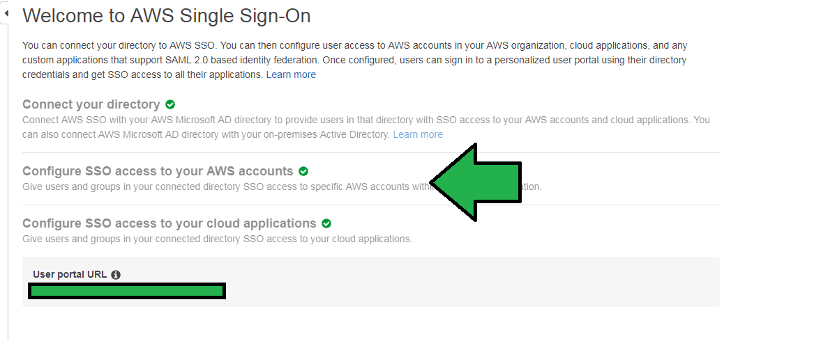aws_sso_0618_4.PNG