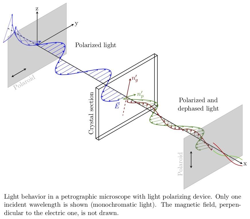 polarizing-microscope.jpg