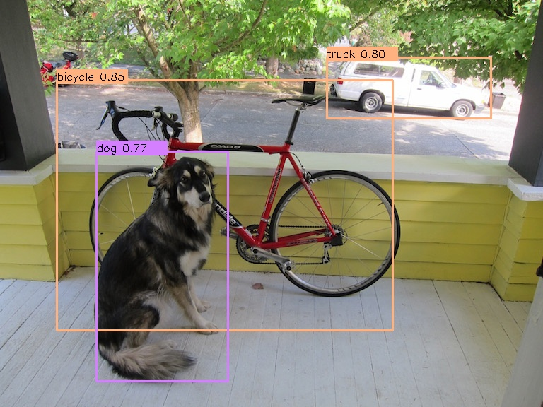 sample_dog2.jpg