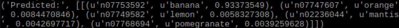 banana_predicted.jpg
