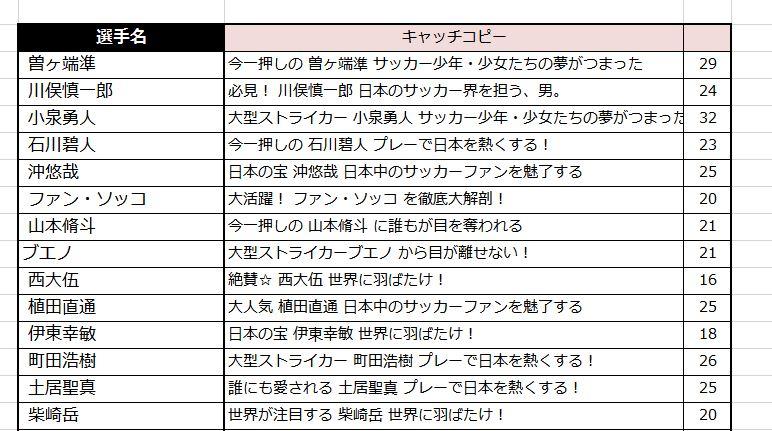 キャッチコピー2.JPG