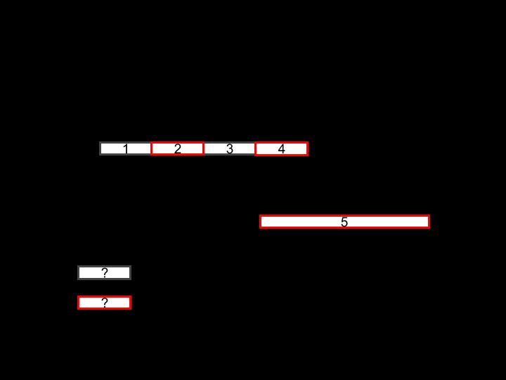 worker-timeline.png