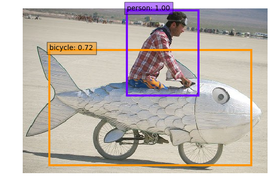 fish-bike-jpg.png