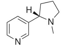 ニコチン.PNG