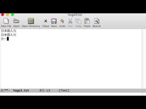 Emacs(EMP,25.1, Custom)