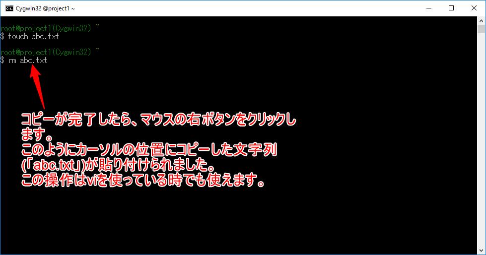 コンソール画面での文字列のコピーについて-c.png