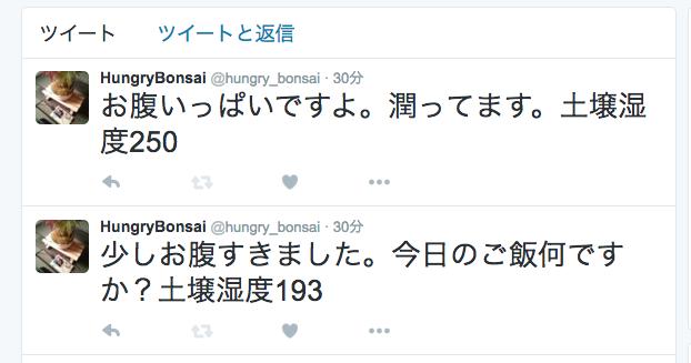 hungry_bonsai.png