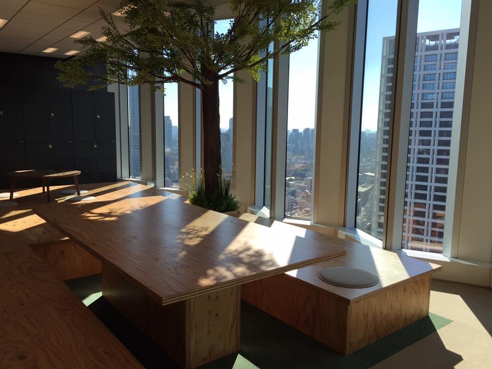 office_tree.jpg