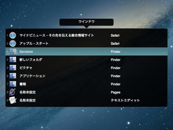 Senebierの使用中の画面