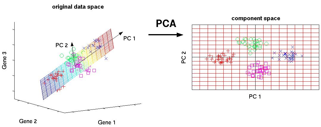 K-Means Clustering via PCA - Qiita