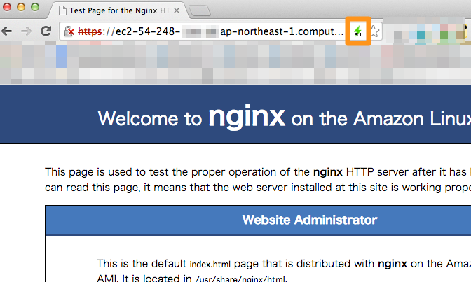 Test_Page_for_the_Nginx_HTTP_Server_on_the_Amazon_Linux_AMI.png