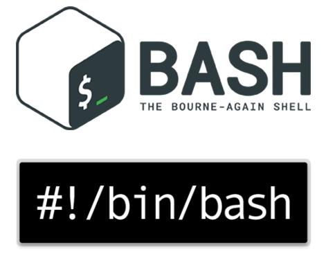 Bash-Final.jpg