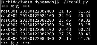 DynamoDB に boto3 で接続 (ハッシュキー、レンジキーを使う