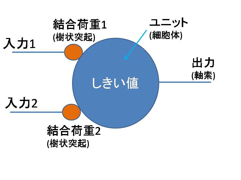 Fig.1-2 モデル化したニューロン