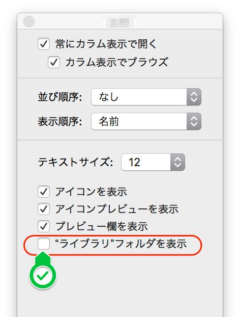 表示オプション_2.png