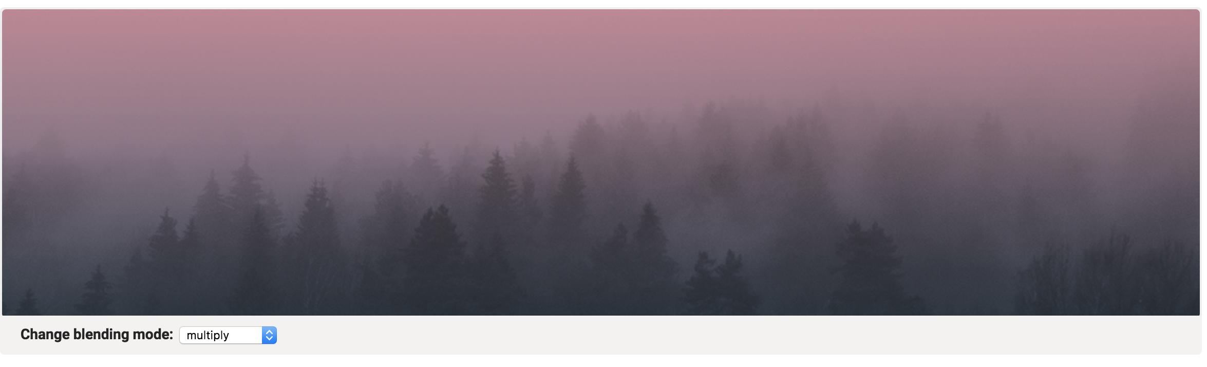 Screenshot_2019-02-28 20.55.56_RaImf3.png